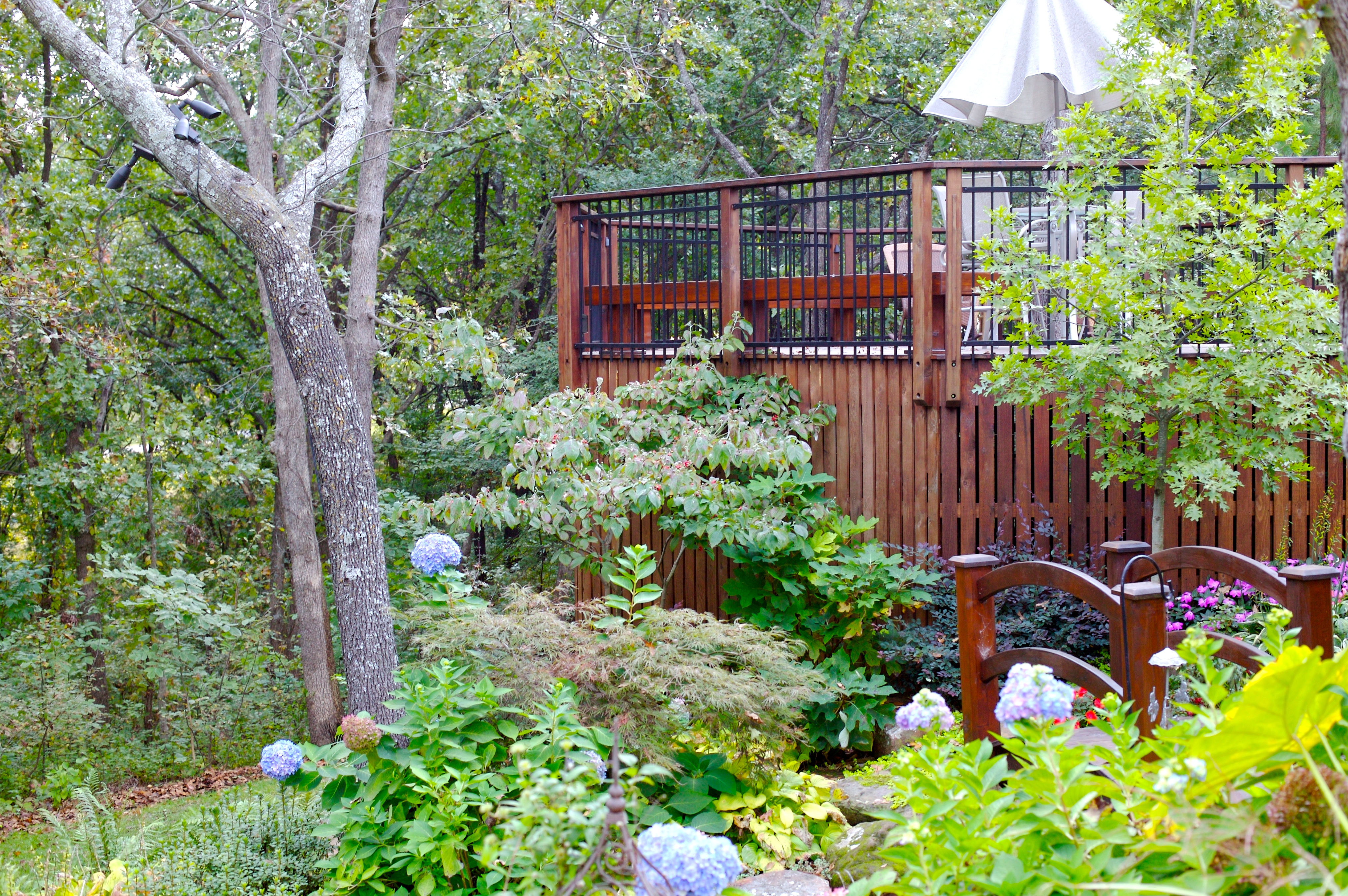 The best time to plant trees and shrubs in your tulsa for Landscape design okc