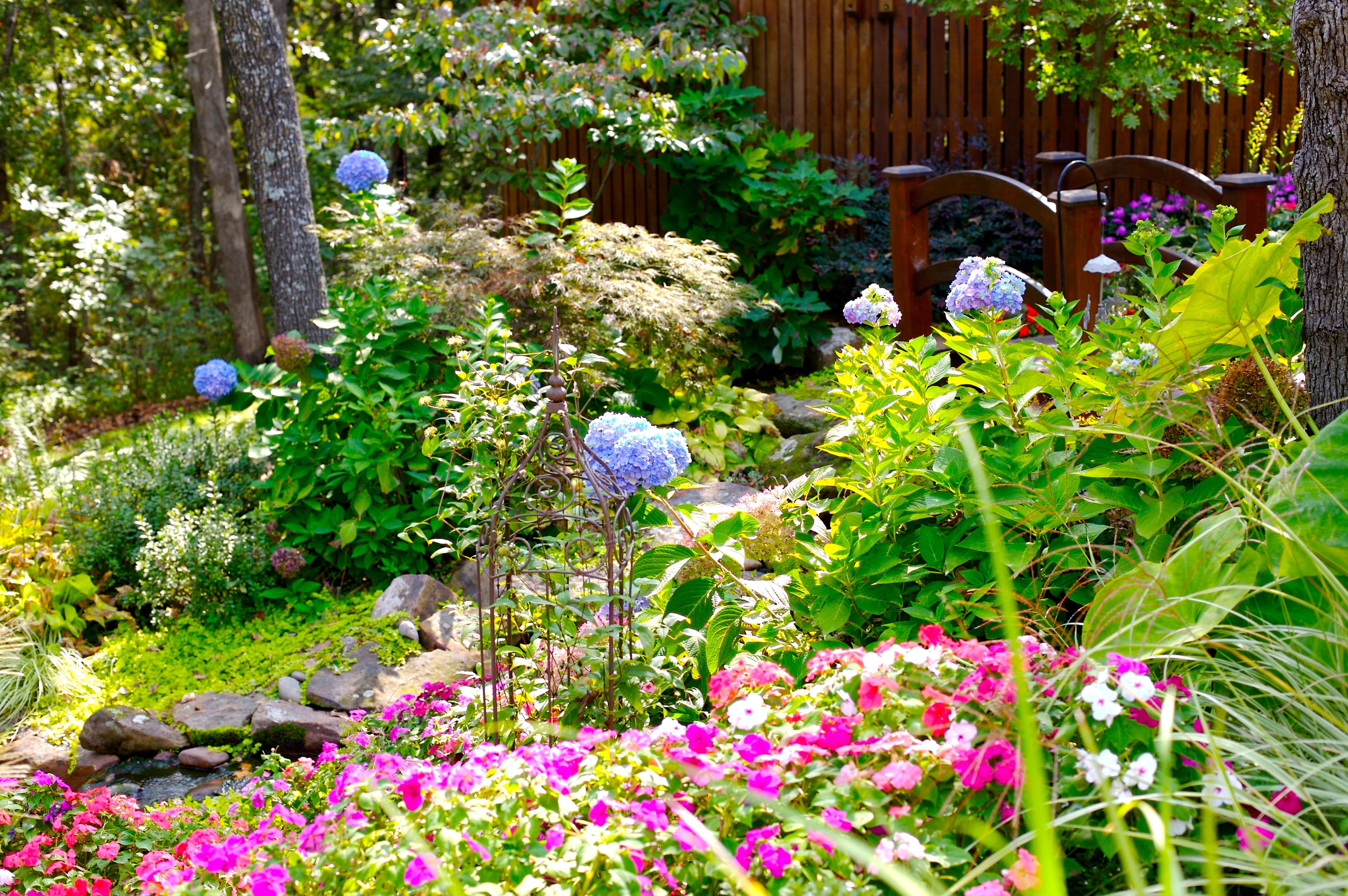 Drought resistant plants the best of tulsa lawn care and - Drought tolerant plants landscape design ...