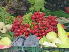 organic gardens tulsa